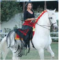 Boticario de la Parra stallion