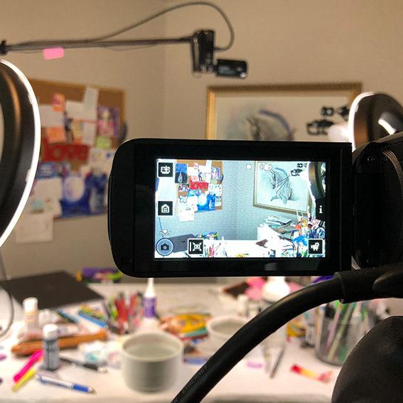 livestream 2 camera setup
